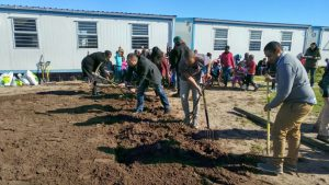 Fair Cape Dairies gardening at Silver Leaf Primary School