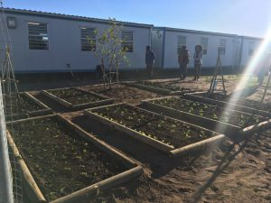 New Garden at Silver Leaf Primary School